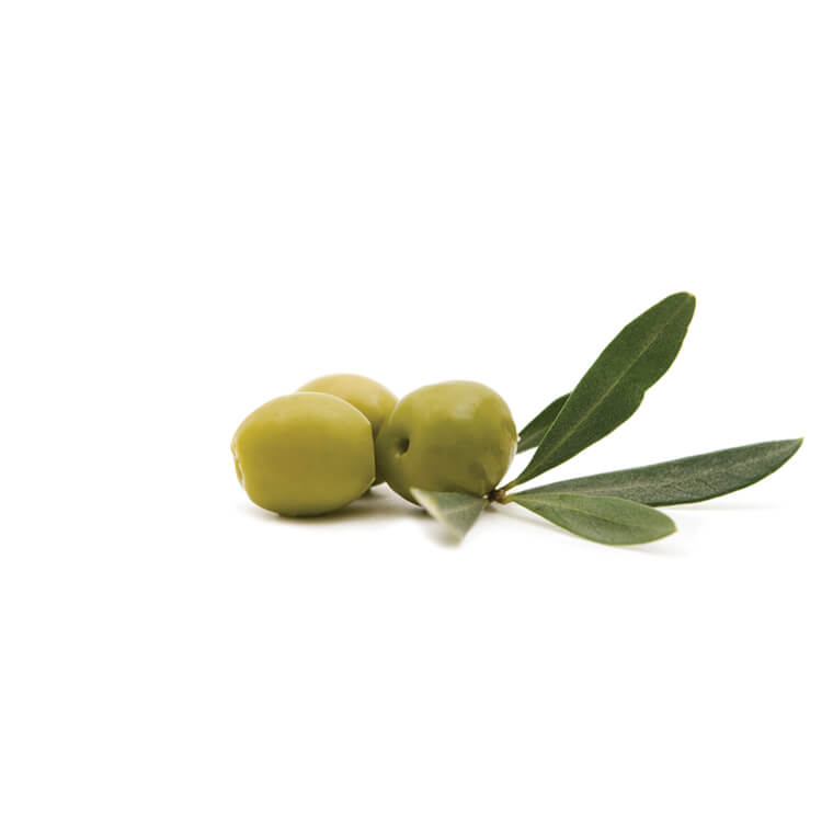 NOCELLARA DEL BELICE<br>WHOLE BRINED OLIVES